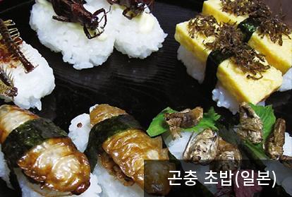 곤충 초밥(일본)
